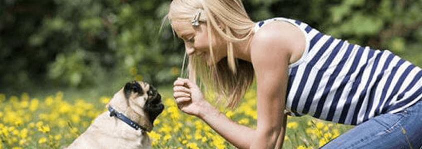 Astım Hastalığı Yaz Gelince Tatile Çıkar