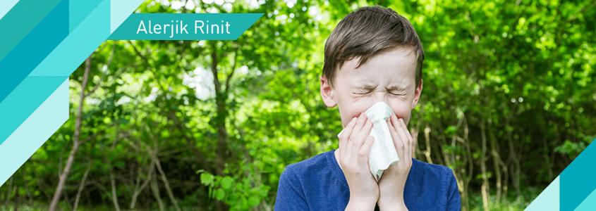 Alerjik Rinit (Alerjik Nezle) İçin Ne Zaman Doktora Gidilmeli